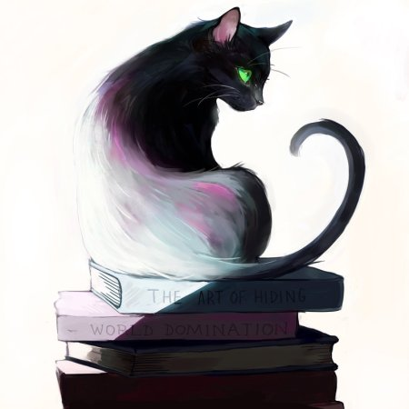what_a_cat_reads_by_picolo_kun-d9bfx00