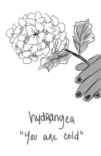 39_flower6
